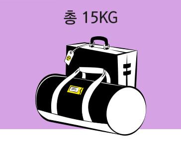 cabin baggage biz